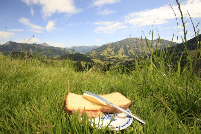 Allgäu Buchel Alpe
