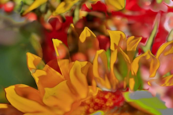 Blumen 1