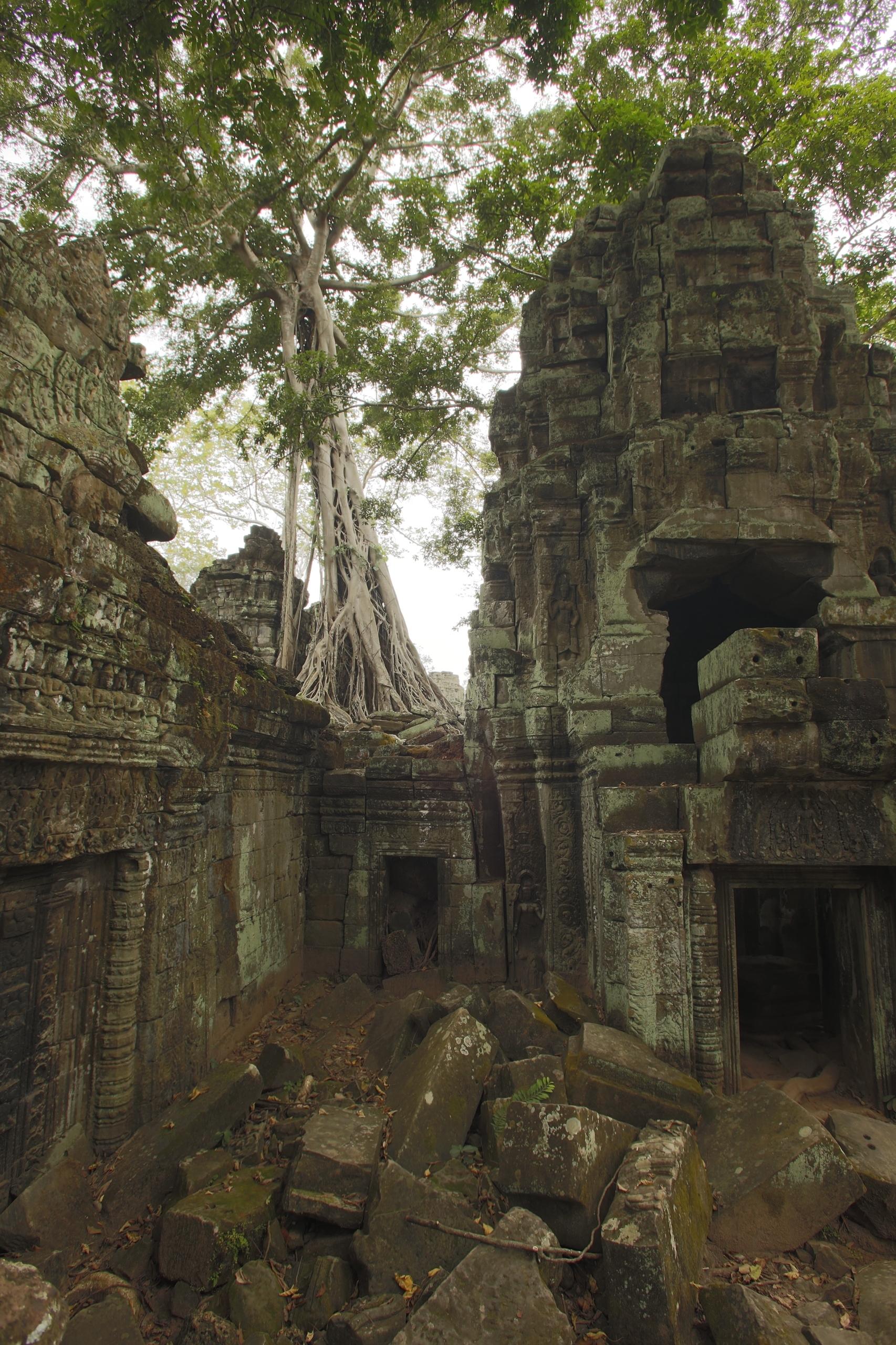 angkor wat 1 by - photo #11