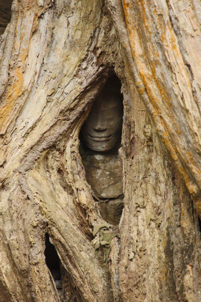 angkor wat 1 by - photo #33