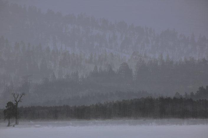 Finnland 1